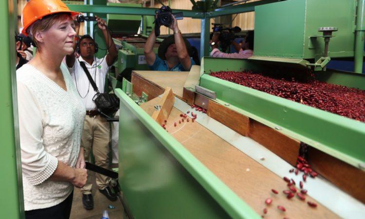 Embajadora Dogu inspecciona una de las máquinas procesadoras de frijol en funcionamiento