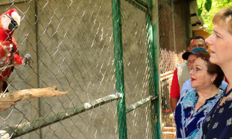 La Embajadora Dogu viendo una lora roja en su jaula