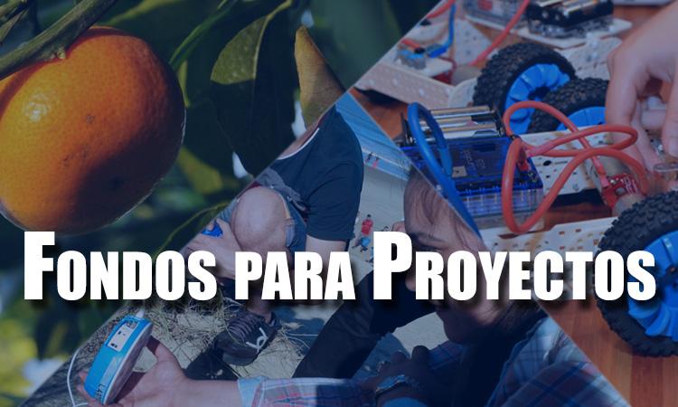 Fondos-Proyectos