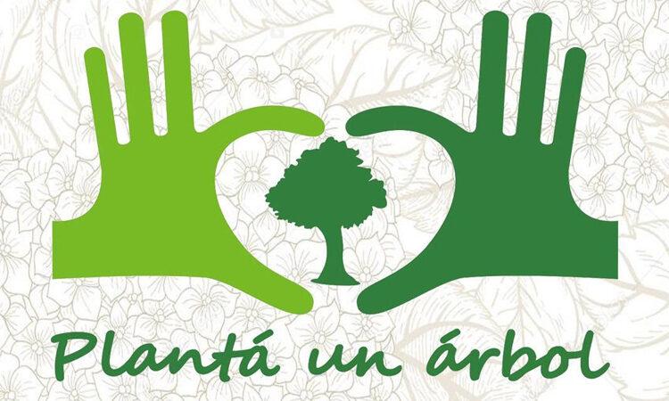 Planta un Arbol Alumni