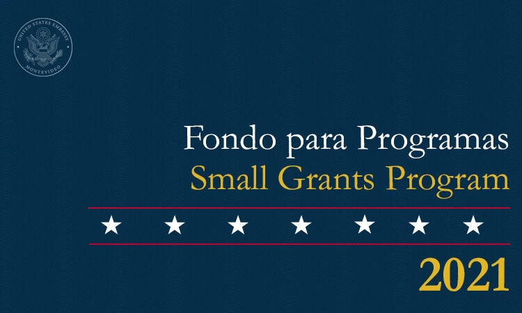 Small-Grants-Spanish