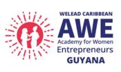 AWE Guyana logo