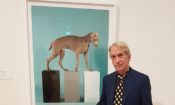 Pic-William-Wegman