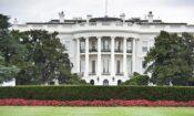 White-House-1140×684