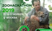 Zoohackathon IT Marathon