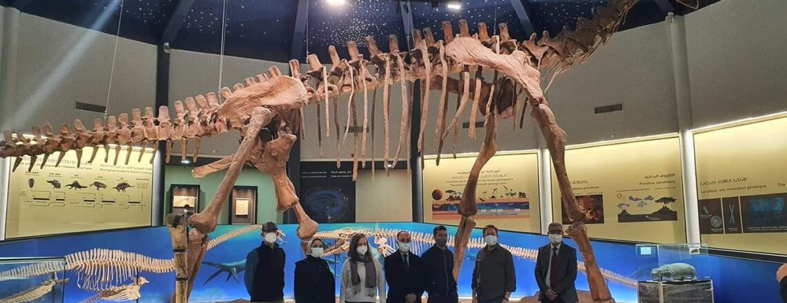 Chargé d'Affaires David Greene's visit to the Geopark Museum