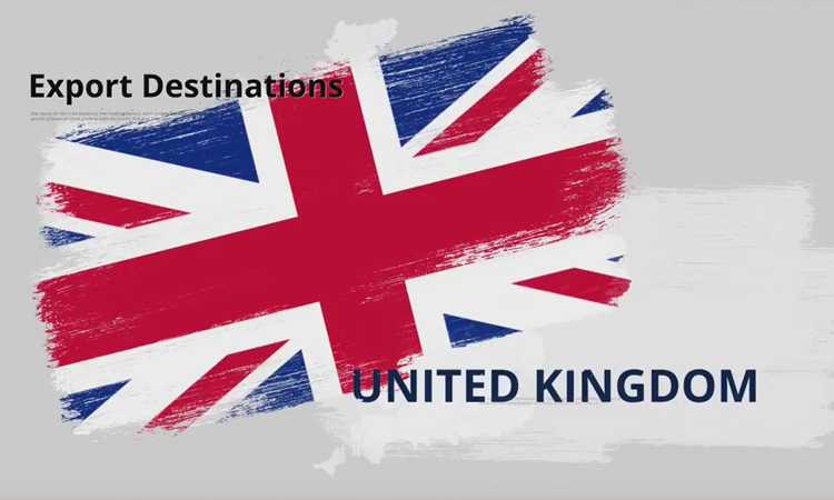 What You Need to Know Before Exporting to the United Kingdom