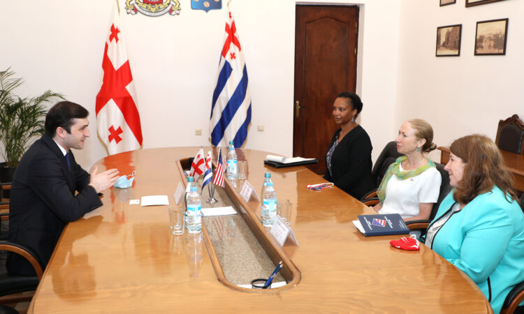 Ambassador Degnan's meeting with Chairperson Rijvadze