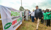 Ambassador W. Stuart Symington tours the first American Style Feedlot in Nigeria