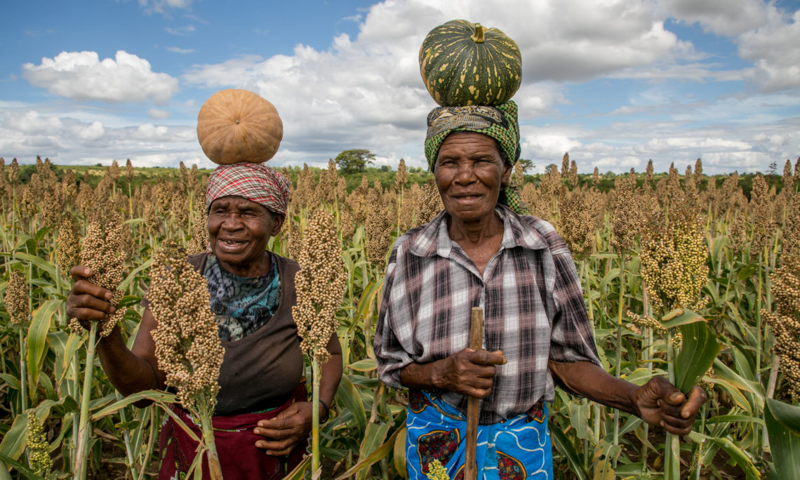 USAID Announces New Program to Combat Food Insecurity in Zimbabwe ...