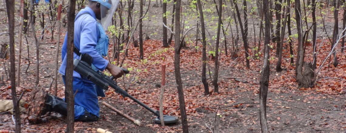 Zimbabwe without landmines: a crucial step towards development