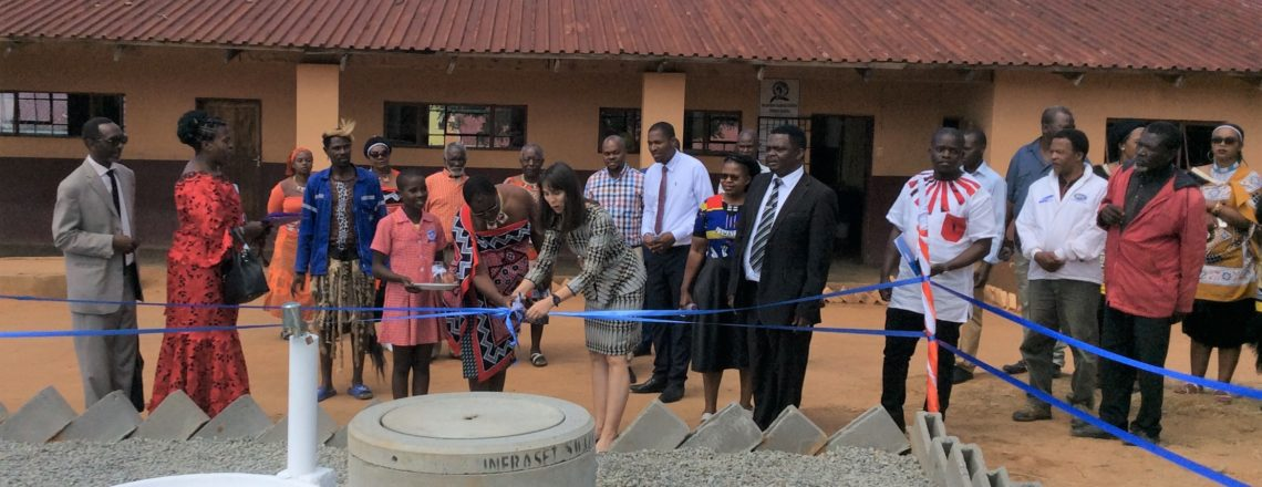Ambassador Peterson Commissions Borehole Project at Malangeni Alliance Primary School