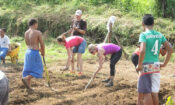 Peace Corps in Samoa a few years ago.
