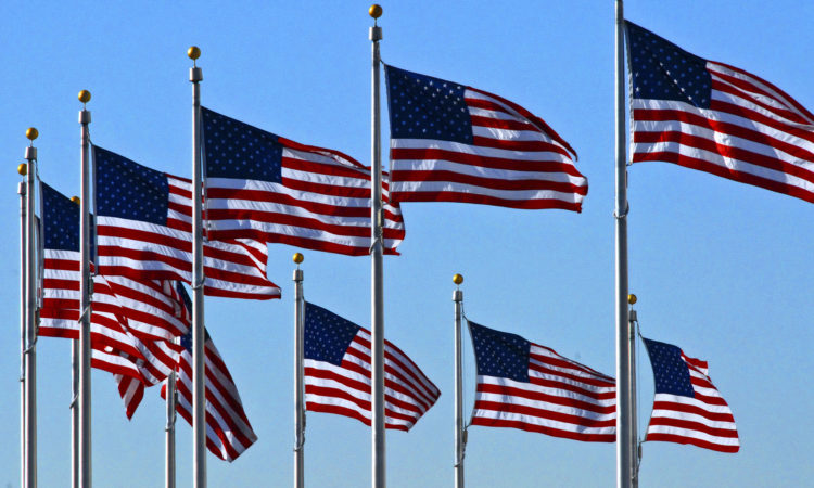 9 American Flags flying