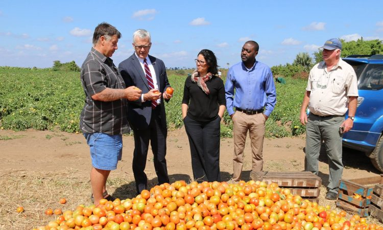 Ambassador Pittman receiving explanation related to tomatos's production
