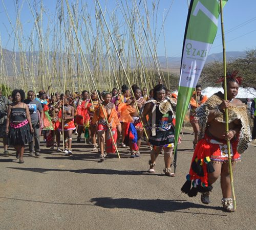 Princesses Nqobangothando and Mukelile Zulu (carrying Zazi flag) led the first group of maidens to deliver their reeds to King Goodwill Zwelithini