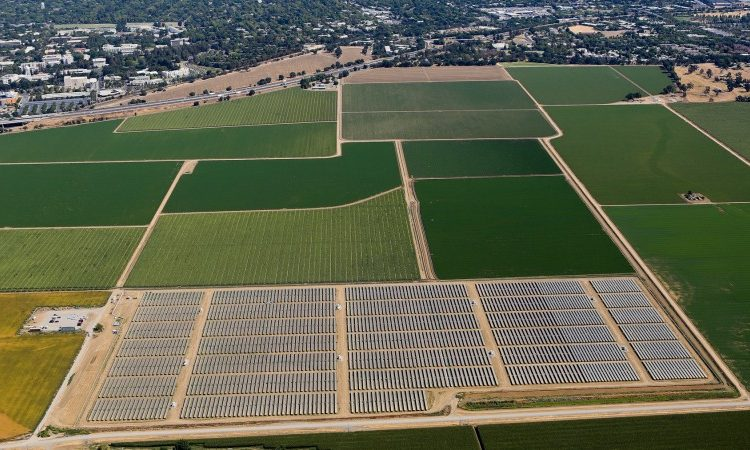 Solar array amid green fields (UC Davis)