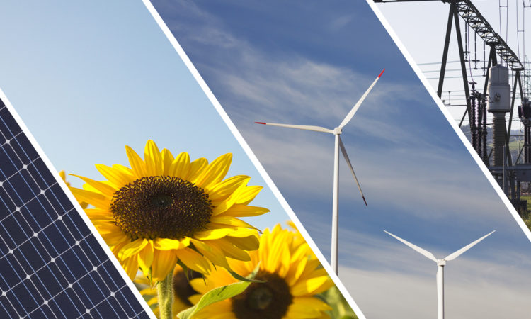 Solar panel, sunflowers, wind turbines and transmission lines