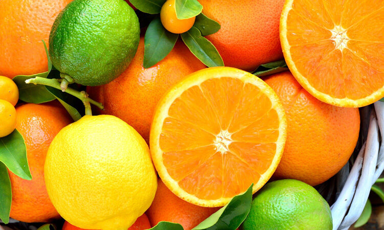United States Opens New Ports to South African Citrus Exports