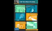 CDC_Infographic-750