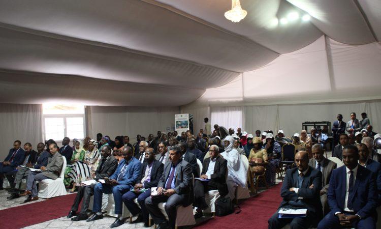 Lancement d'un Projet pour l'Emploi des Jeunes