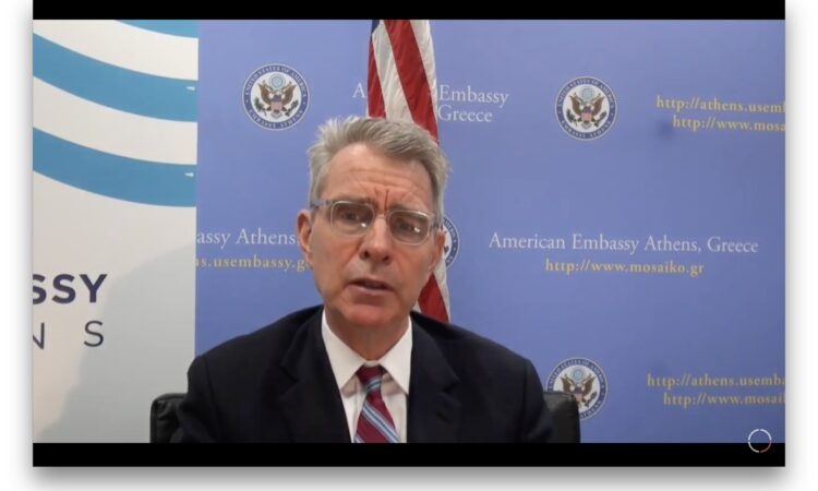 Ambassador Pyatt delivers remarks at DCN Forum (Screenshot)