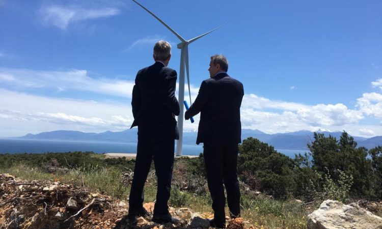 Ambassador Pyatt at Wind Park Inauguration