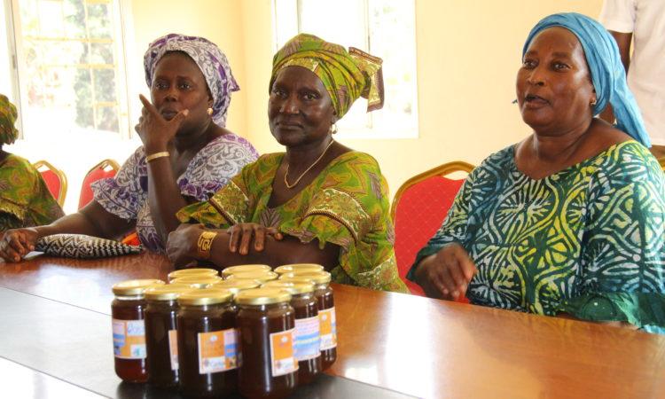 miel en Casamance