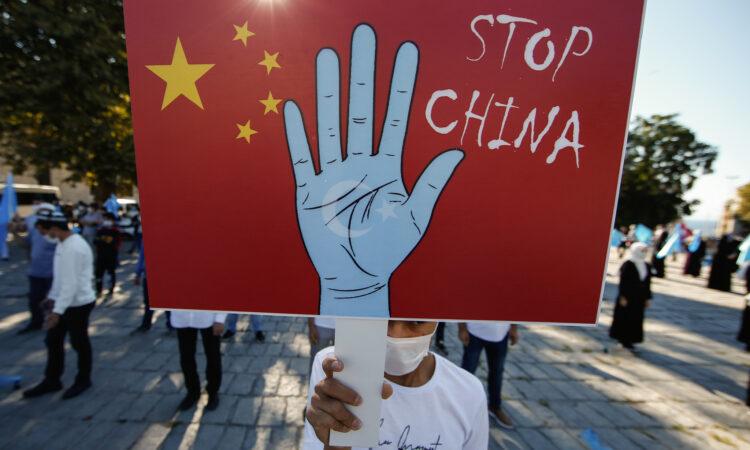 Plakat eines Demonstranten zeigt erhobene Hand vor chinesischer Fahne (Foto: Emrah Gurel/AP Images)