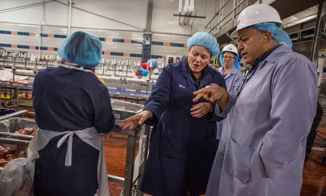 Margaret Roles, Qualitätssicherungsmanagerin bei Bell & Evans, erörtert mit Hany Sidrak, einem leitenden Angestellten des Lebensmittelsicherheits- und Kontrolldienstes, dem Hunderte auf Bundesebene beschäftigte Veterinärmediziner unterstellt sind, die Sicherheitsverfahren des hochmodernen Geflügelbetriebs. Jeder Fleisch- und Geflügelbetrieb in den Vereinigten Staaten hält sich an strenge Vorgaben, die der Gefahrenabwehr dienen. (Foto: Tyrone Turner)