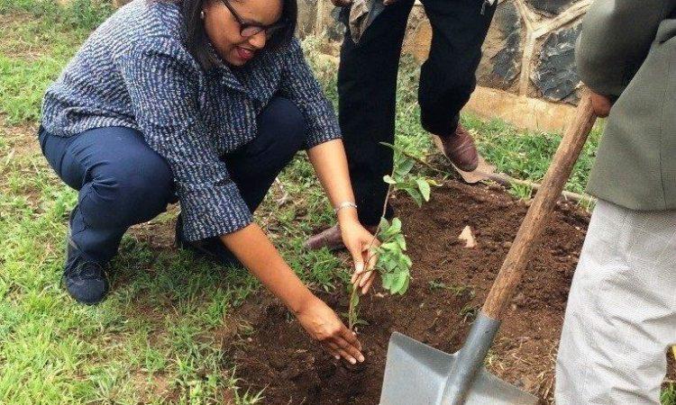 COM, Natalie E. Brown, tree planting ceremony.