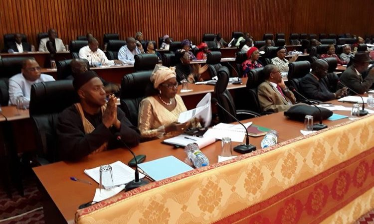 "Parliamentarians voted in favor of the ""Draft Law on Medicines, Health Products and the Practice of the Pharmaceutical Profession"" to end the illicit sale of medicines and raise the level of professionalism among pharmacists, to improve the health of Guinea's population."