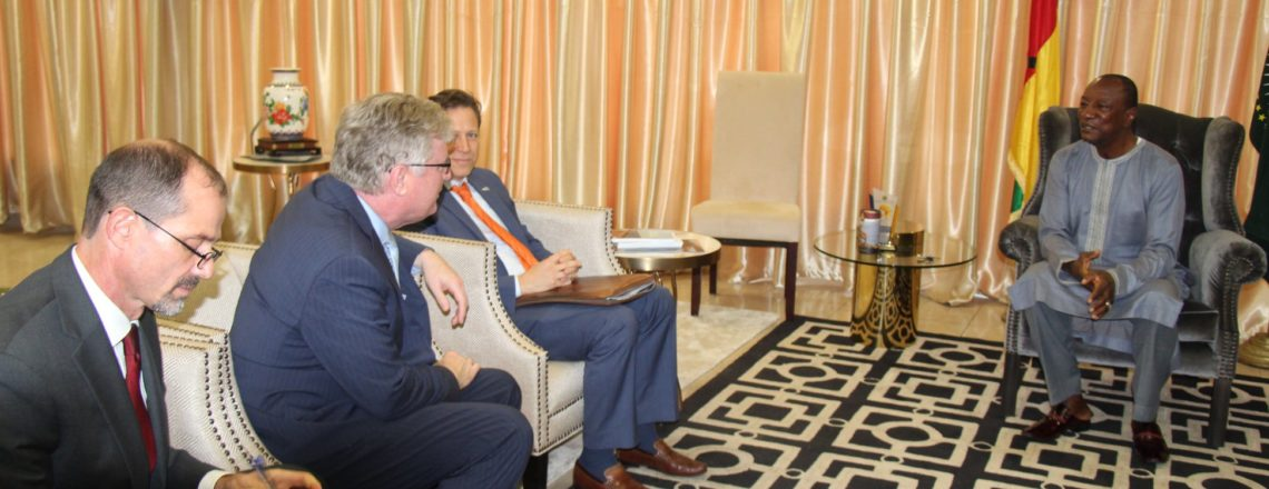 Power Africa Head Meets with President Condé