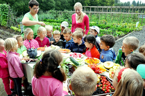 A group of children from the Pruhonice Pre-school joined us for the fruit and vegetable garden harvest.