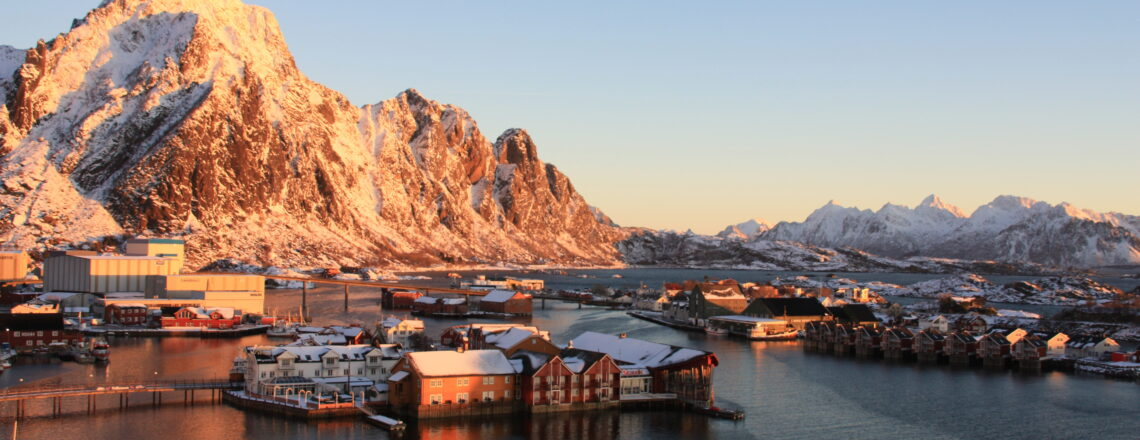"""21 Questions for an """"Arctic Advisor"""""""