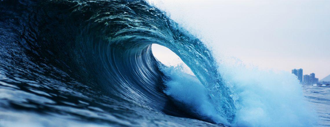 U.S. Delegation to Our Ocean 2019