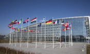 international flags in a circle blown by the wind, in front of a glass building