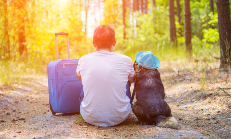 Man traveler sitting with a dog and travel bag on a dirt road in the pine forest in summer back to the camera. The dog wearing the sun hat.