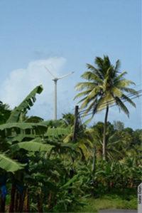 A wind turbine among palm trees