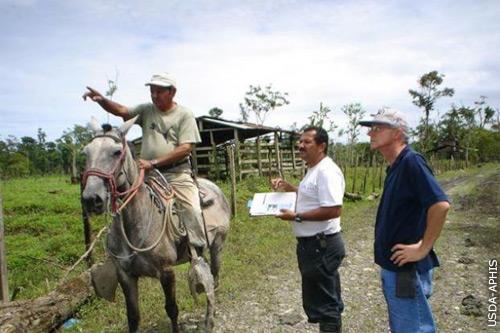 Cooperative Animal Health Surveillance Program