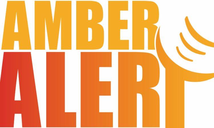 Logo Ambert Alert