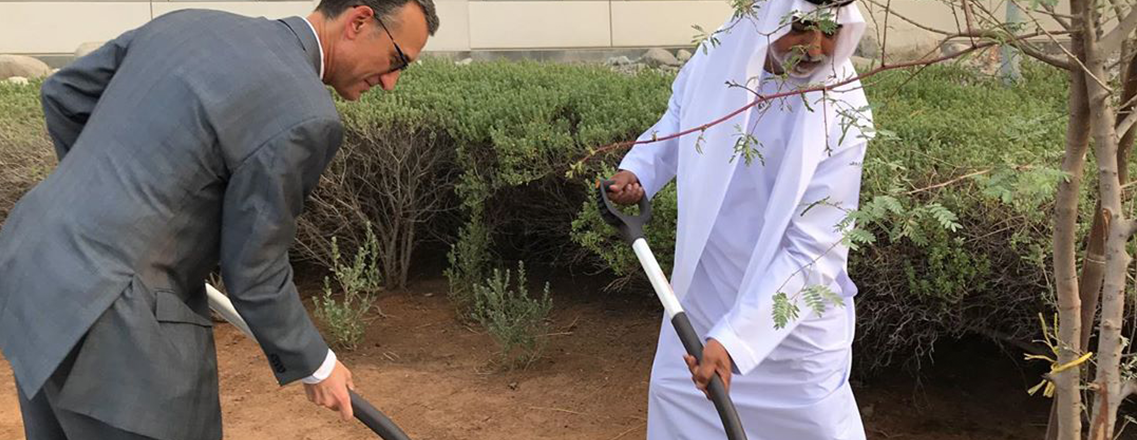 Planting a ghaf tree in the Embassy
