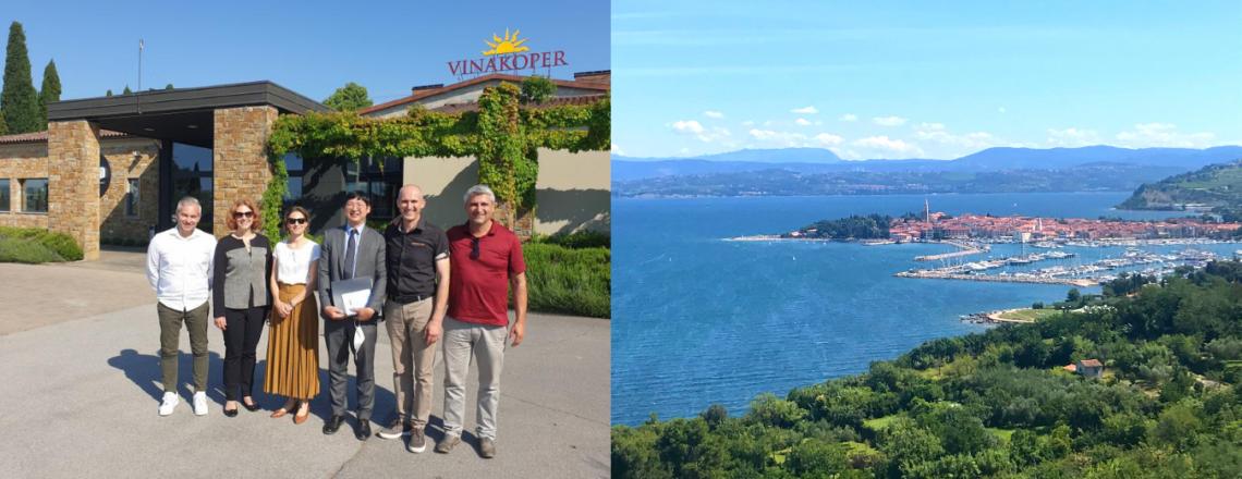 A visit to Primorska, Slovenia's window into the world