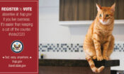 Voting Campaign Graphic – Cat – Registering to Vote