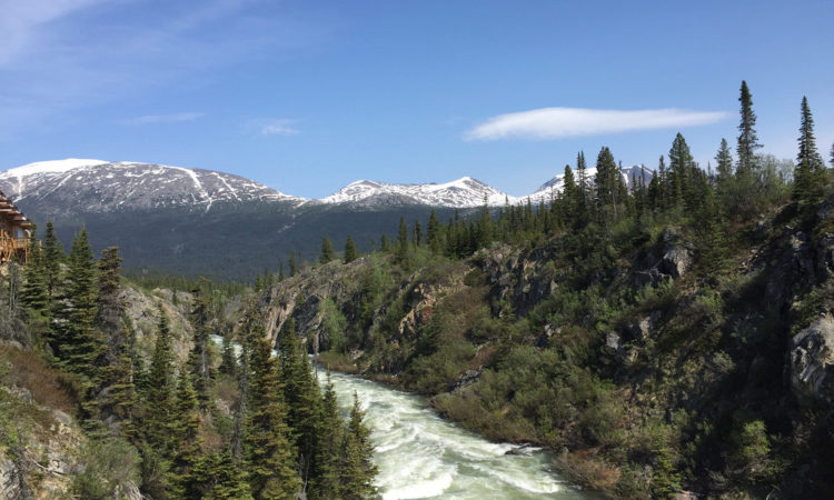 White-water rapids (class 5 rapids) of the Tutshi River and Canyon in the British Columbia, Canada. USDA photo by Alice Welch.