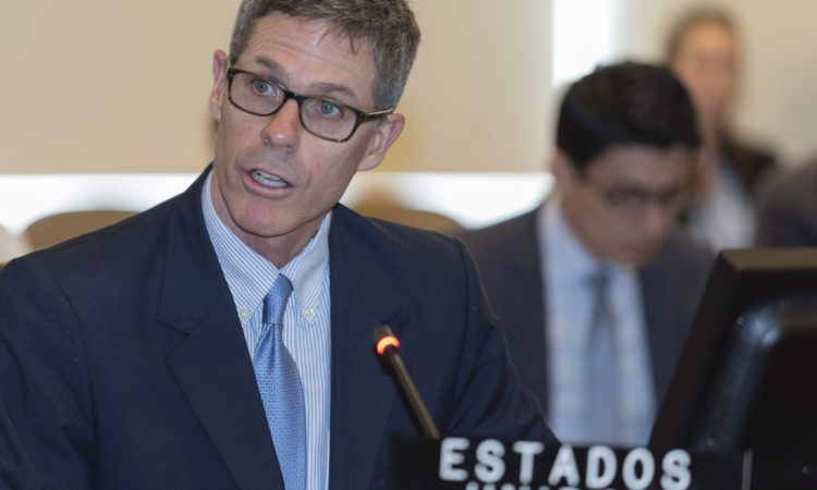 Alexis Ludwig, Deputy U.S. Permanent Representative to the OAS, addresses a Special Meeting of the Permanent Council marking the 25th anniversary of the AMIA bombing, July 28, 2019.