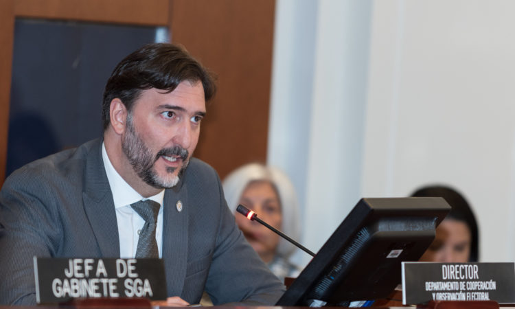 Gerardo de Icaza, Director of the OAS Department of Electoral Cooperation and Observation (DECO), delivers the report at a special session of the OAS Permanent Council, November 12, 2019. (OAS Photo)