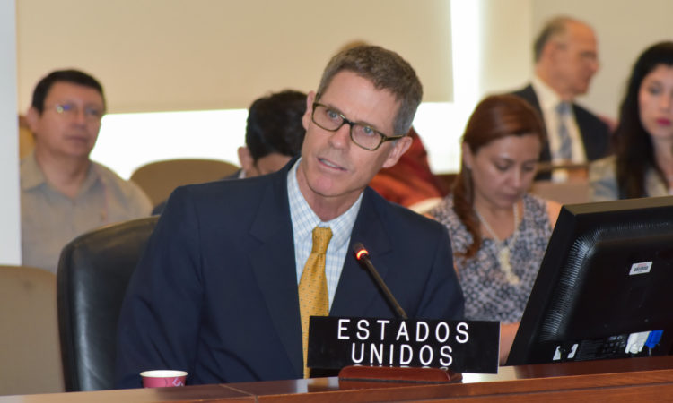Deputy U.S. Permanent Representative Alexis Ludwig addresses the OAS Permanent Council, August 28, 2019. (OAS Photo)