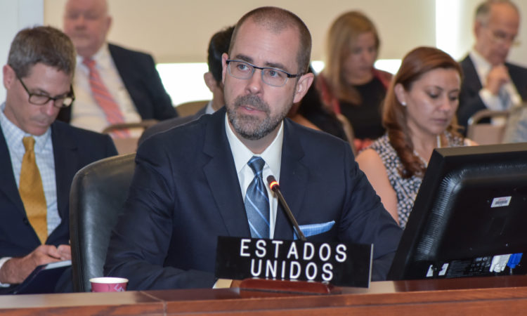 State Department Special Advisor Knox addresses the OAS Permanent Council, August 28, 2019. (OAS Photo)