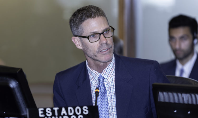 Alexis F. Ludwig, Deputy U.S. Permanent Representative, addresses the OAS Permanent Council. (File Photo)